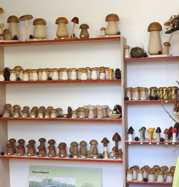 étagère de petits champignons
